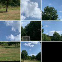 Compilatie van natuurfoto's als schuifpuzzel om correct neer te leggen.