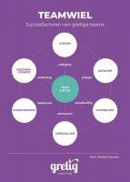 Infographic met succesfactoren voor een team.