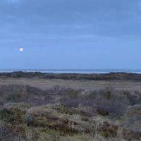 Visual van strand met volle maan